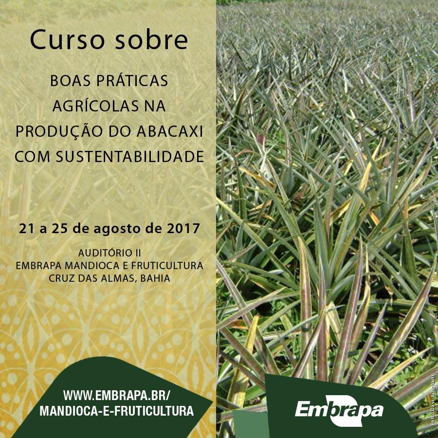 Curso sobre Boas Práticas Agrícolas na Produção de Abacaxi